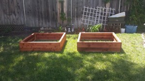 48 x 48 x 12 redwood raised bed planters