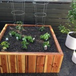51 x 51 x 18 redwood planter