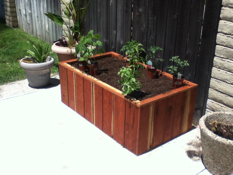 Redwood Box filled with soil