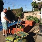 Installing liner - redwood planters