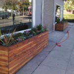 10 foot redwood planters - Silver Lake, CA