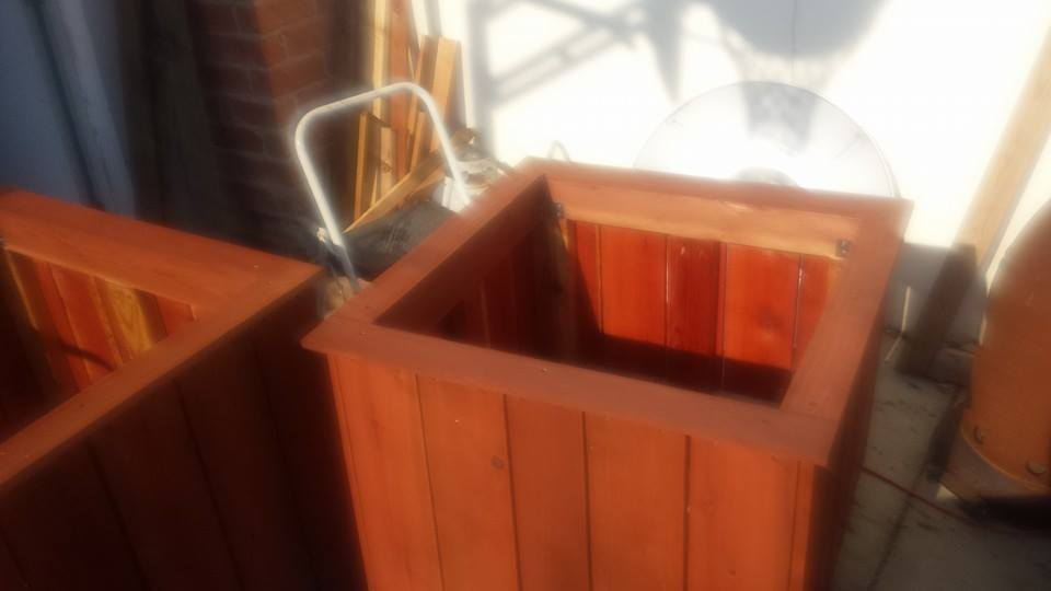 Custom redwood tree planter box
