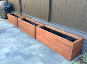Semi-Transparent Acorn Brown planters