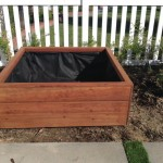 50 x 50 x 18 redwood planter