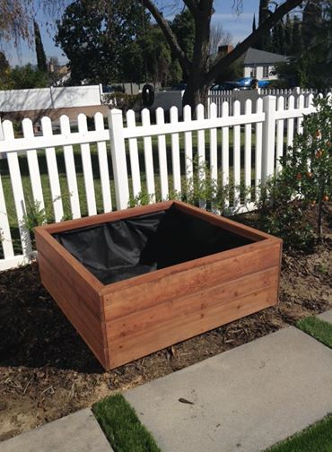50 x 50 x 18 redwood planter - semi trans acorn brown